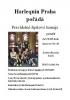 V pondělí první šipkový turnaj v billiardovém klubu Harlequin Praha